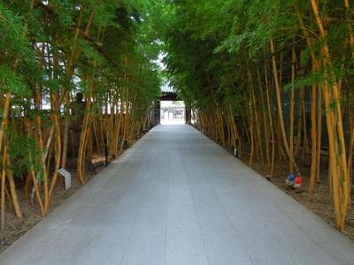 竹林の梅窓院参道